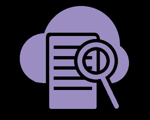 Digital Data Audit graphic