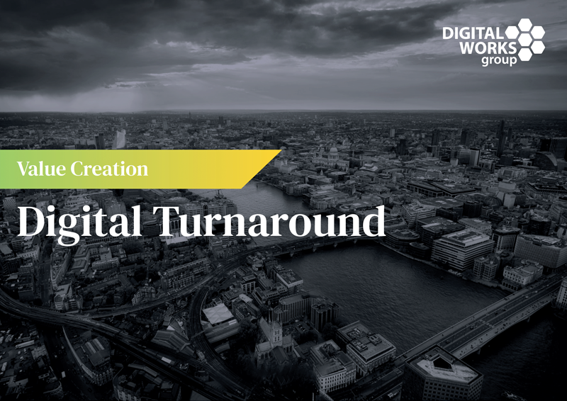 dwg private equity digital turnaround download